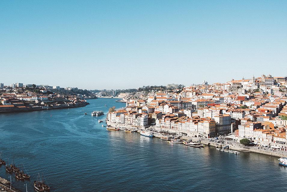 Tem Na Web - Como é morar com cachorros no Porto, em Portugal?